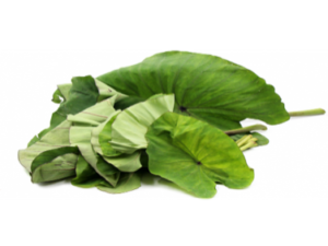 Kontomire (cocoyam leaves)